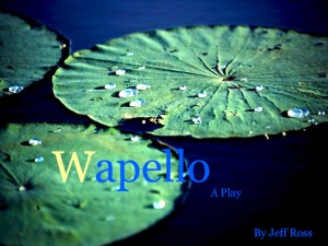 WapelloA copy